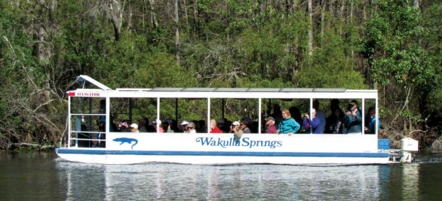 wakulla springs singles Arrive early and fuel up with breakfast prior to the walk in the historic wakulla springs lodge meet in the lobby of the lodge at 8:45 am space is limited • what to bring water bottle, insect spray • important to know free with park admission charlie baisden, r.